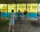 Малый теннис